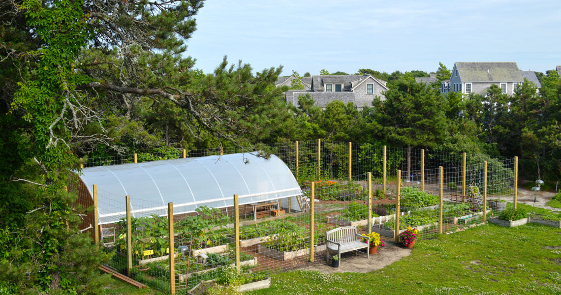 Nantucket Lighthouse School Victory Gardeners!